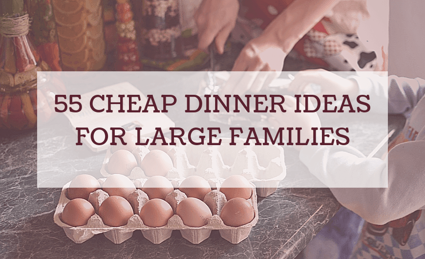Cheap Family Meals Under $20