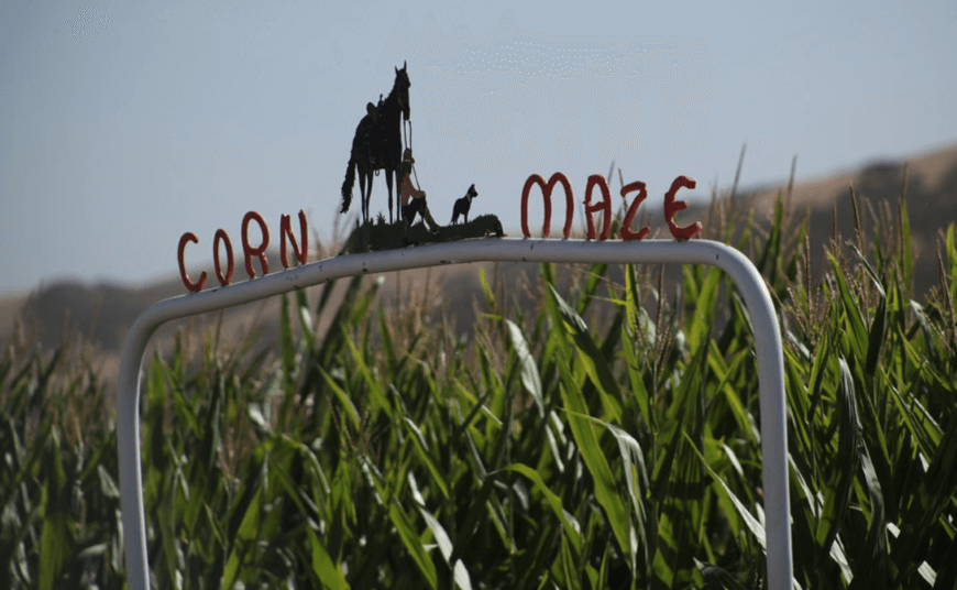 halloween freebies corn mazes