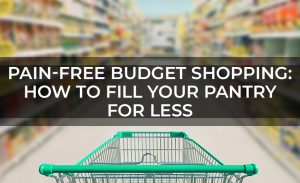 Pain Free Budget Shopping  How to Fill Your Pantry for Less