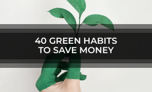 40 Green Habits To Save Money