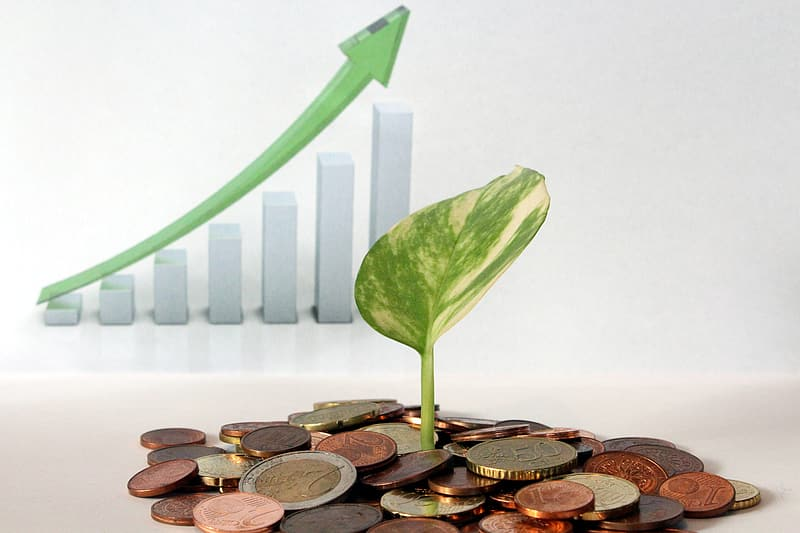 investments make your savings grow