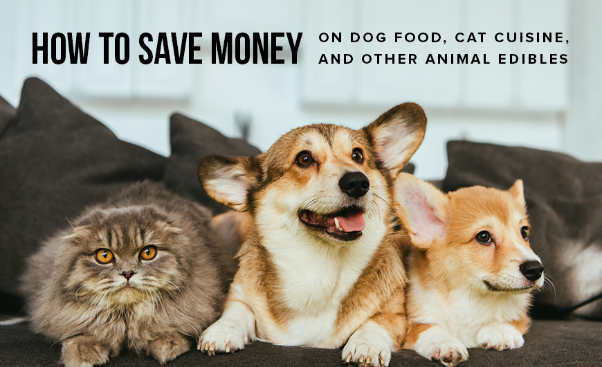 K32 How to Save Money on Dog Food Cat Cuisine and Other Animal Edibles