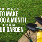 K40 20 Ways To Make 1000 A Month From Your Garden