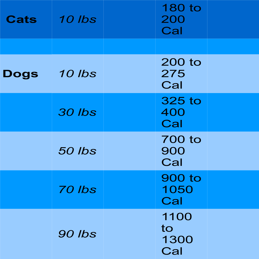 how to save on dog food and prevent obesity