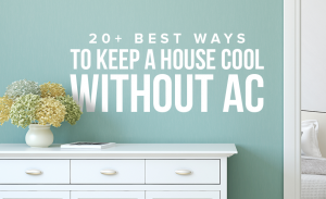 M31 20 Best Ways To Keep A House Cool Without AC